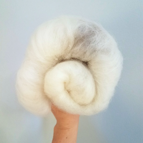 cottontail fiber main_500